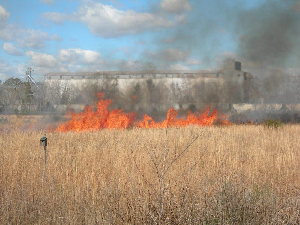 2 feb 2013 fire